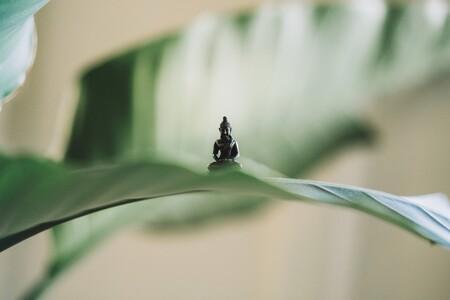 Buddha sitzt auf einer Blume